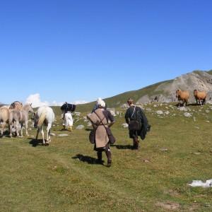 Alpes 2008